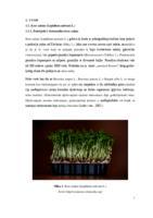 prikaz prve stranice dokumenta Klijavost sjemena kres salate nakon tretmana biljnim ekstraktima